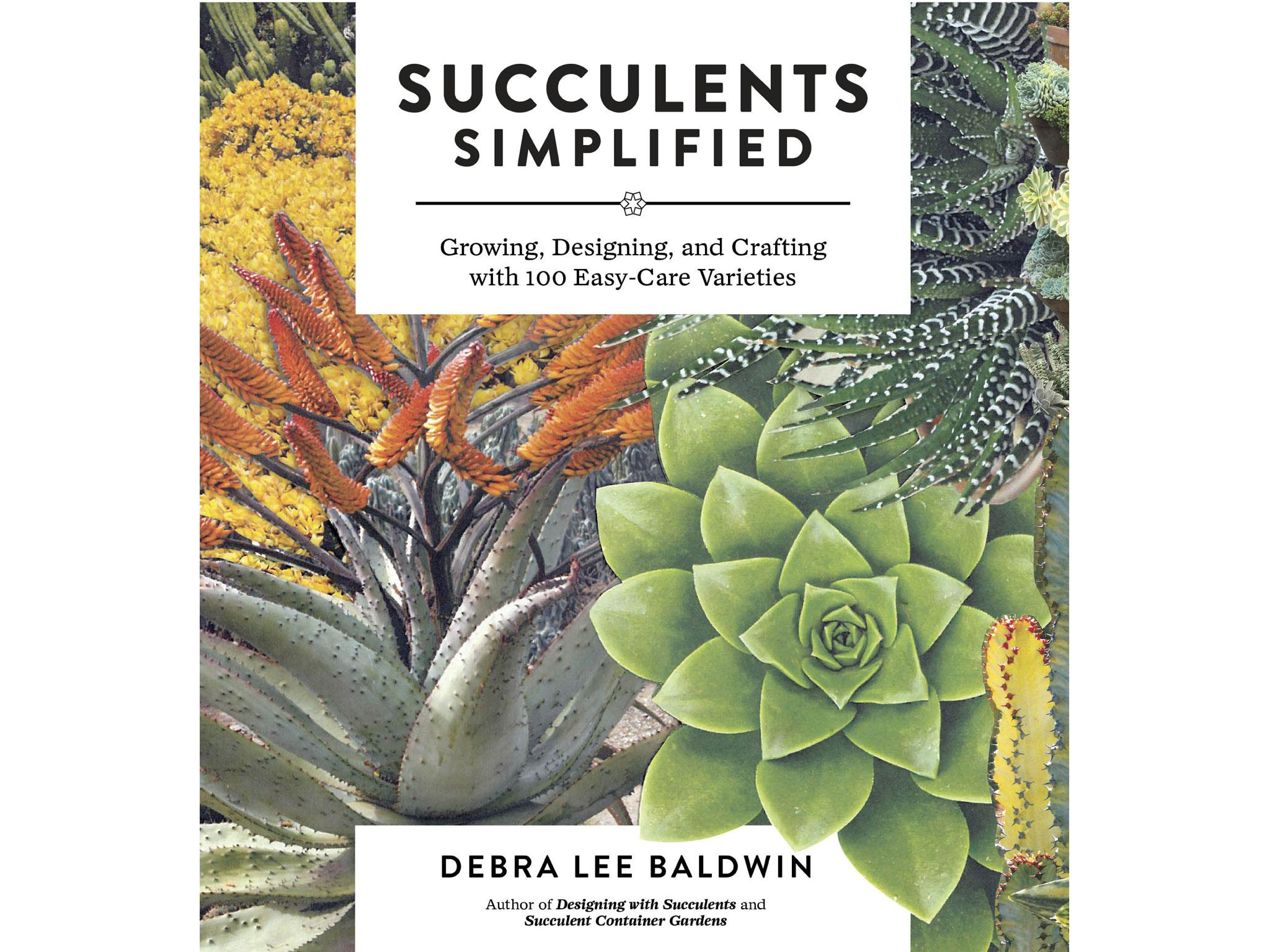 11 Best Indoor Planting Books The Independent Wiring Simplified Ebook Succulents By Debra Lee Baldwin 1699 Timber