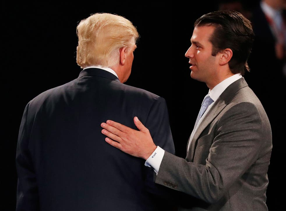 Donald Trump Jr's meeting with a Russian lawyer is being examined