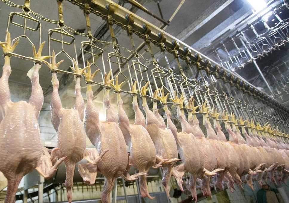 Chlorine Washed Chicken Qa Food Safety Expert Explains Why Us