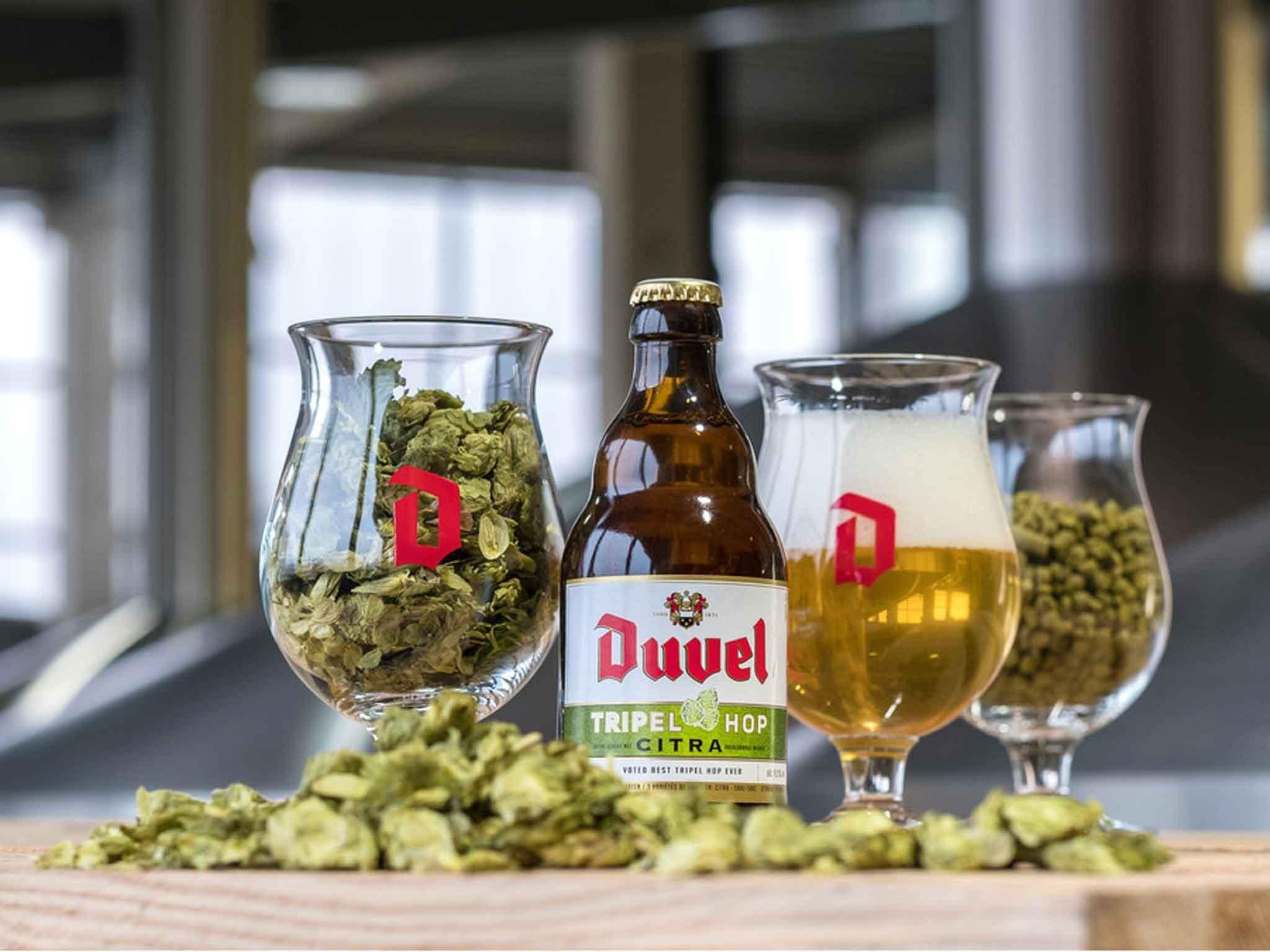 10 Best Belgian Beers The Independent
