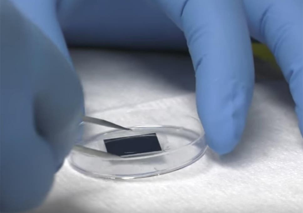 Breakthrough Microchip Technology Helps Heal Wounds Nerves And