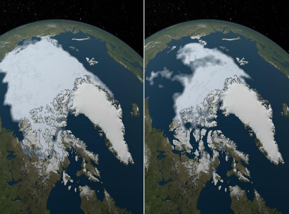 Arctic sea ice in 1984 (L) and 2012 (R). Picture: