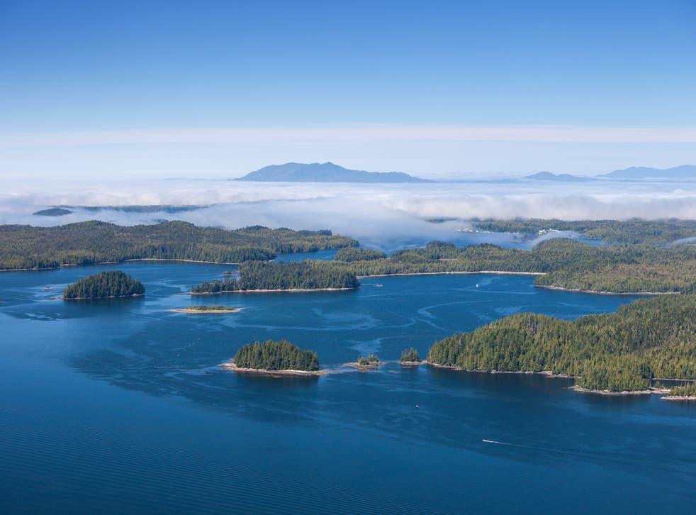 Haida Gwaii is working to restore its natural habitat