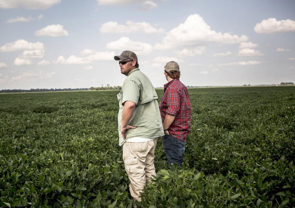 Miracle' weed killer that was supposed to save farms is killing them