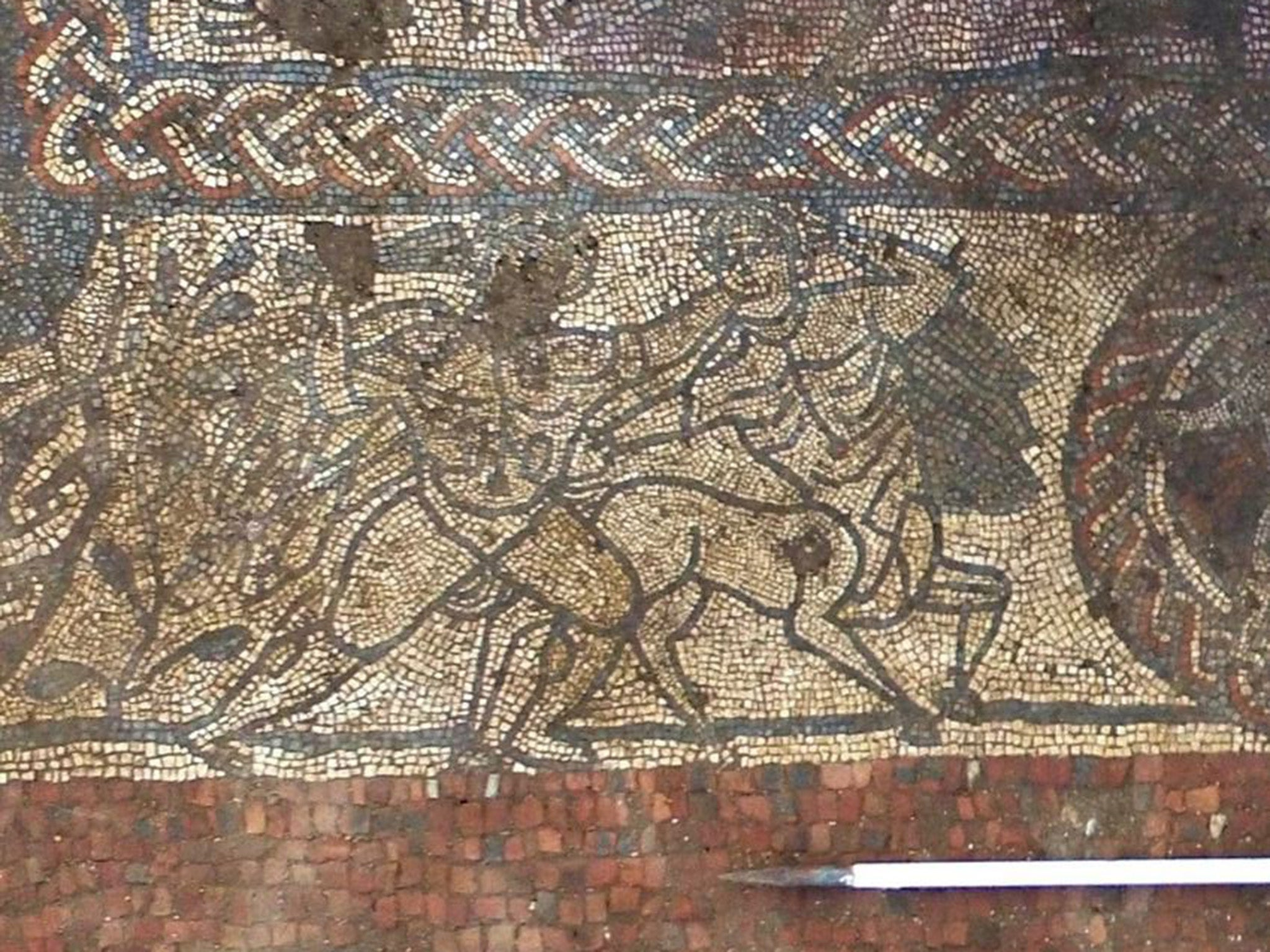 Amateur archaeologists unearth rare Roman mosaic hailed as 'best seen in decades'