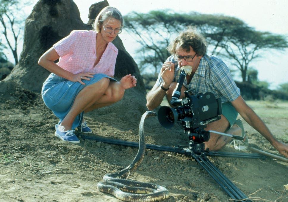 Alan Root Wildlife Filmmaker Who Documented Animals In
