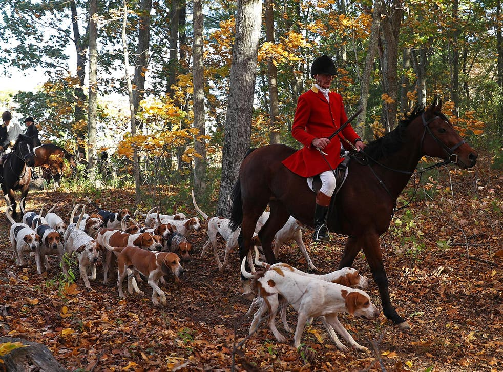Fox hunting has been banned in the UK since 2004