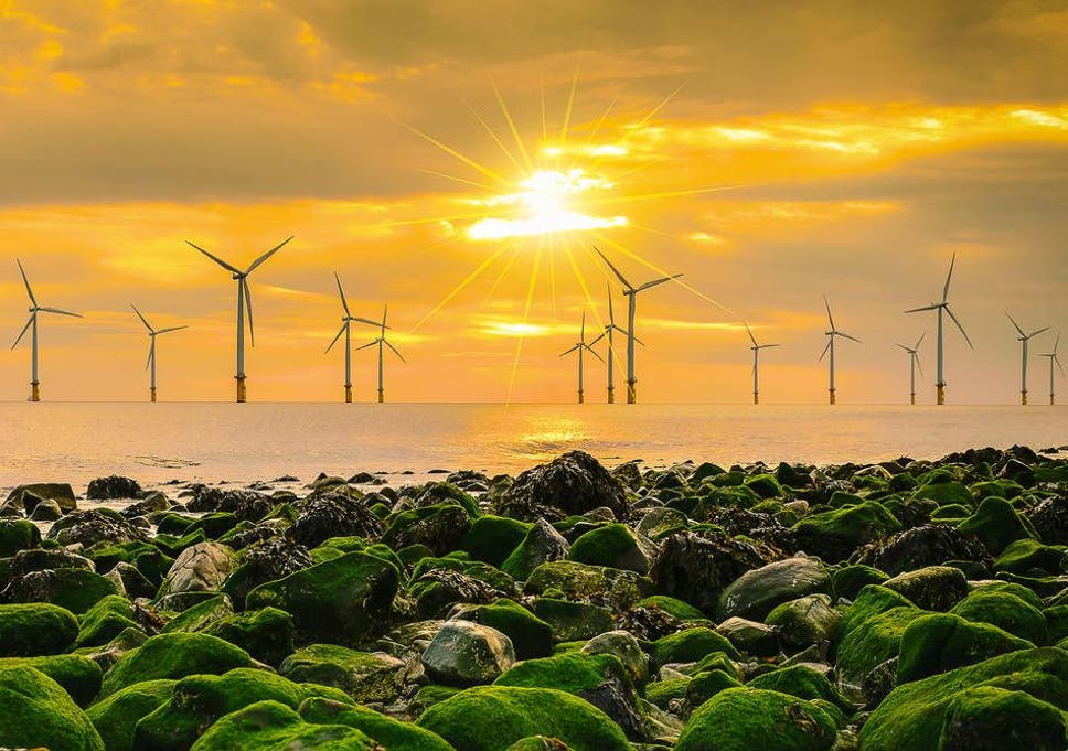 Wind farms: Britain's offshore boom is concentrating power in the