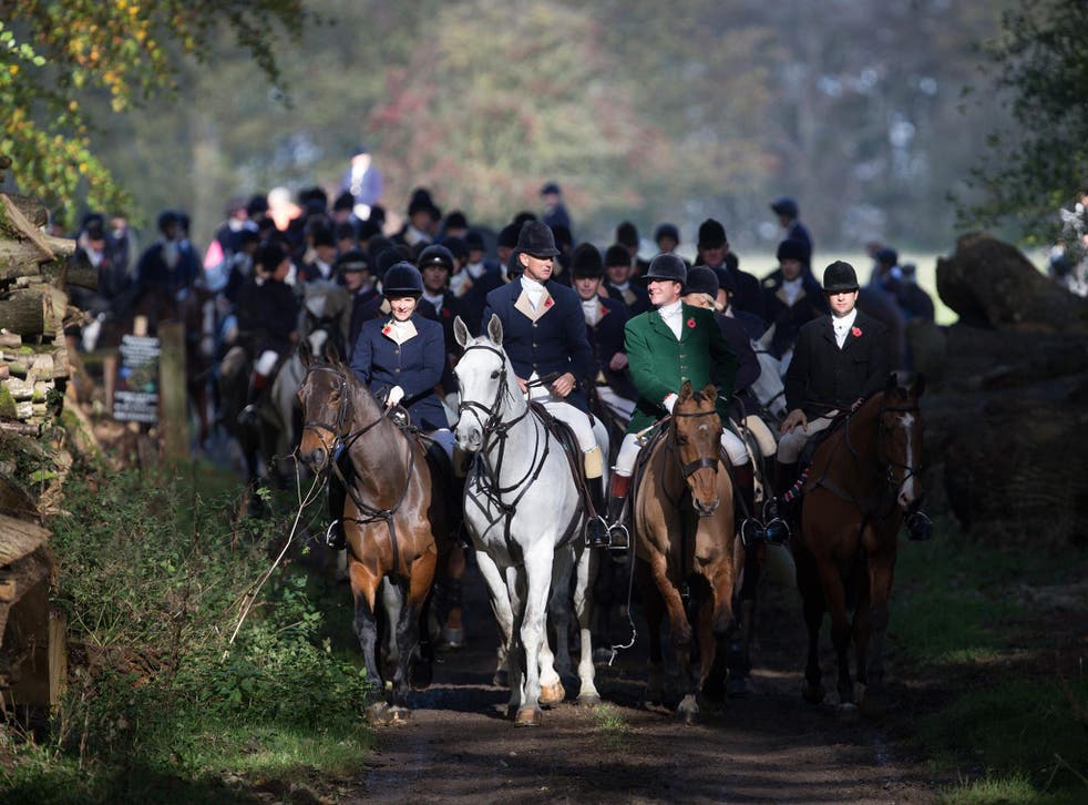 The police appear confused about what actually constitutes illegal hunting with dogs