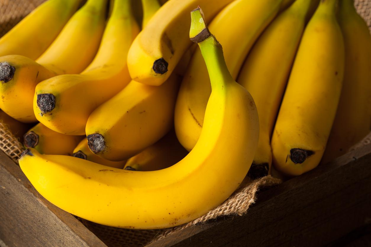 Bananas could face extinction due to spread of deadly fungus