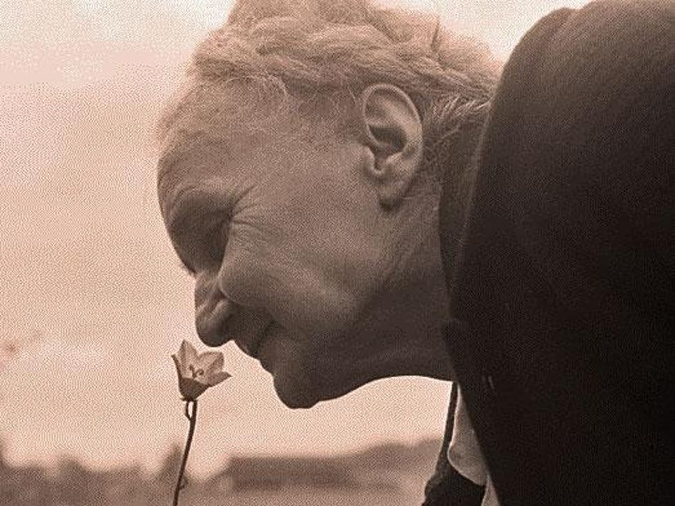 Losing sense of smell in later life could be early sign of dementia new research suggests testing peoples ability to smell could be used to detect dementia before the fandeluxe Images