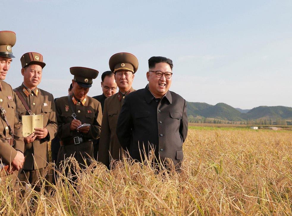 A photo released by North Korea's Korean Central News Agency (KCNA) shows Kim Jong Un visiting a farm