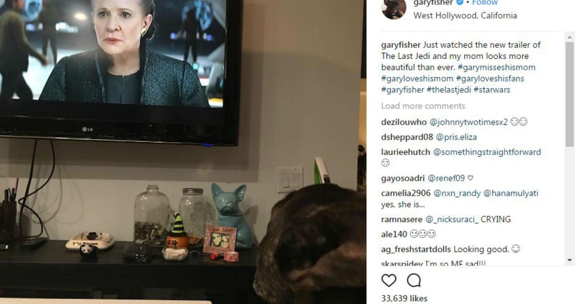 Gary The Dog Watching Star Wars