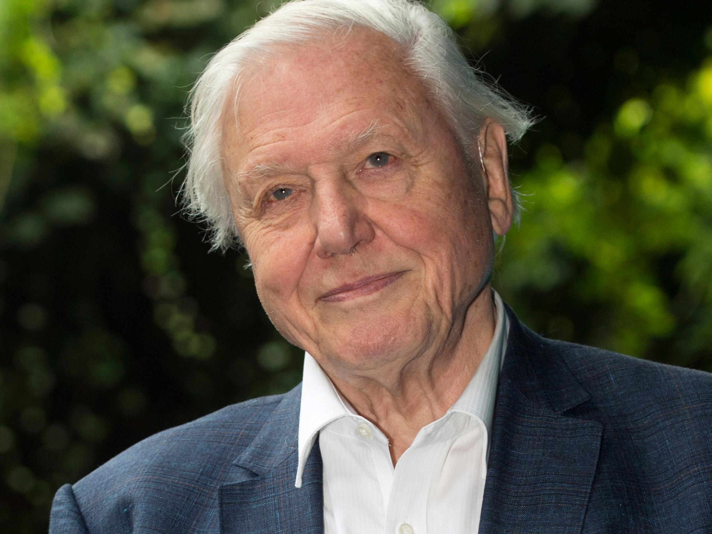 David Attenborough Says World Must Act Now On Plastic