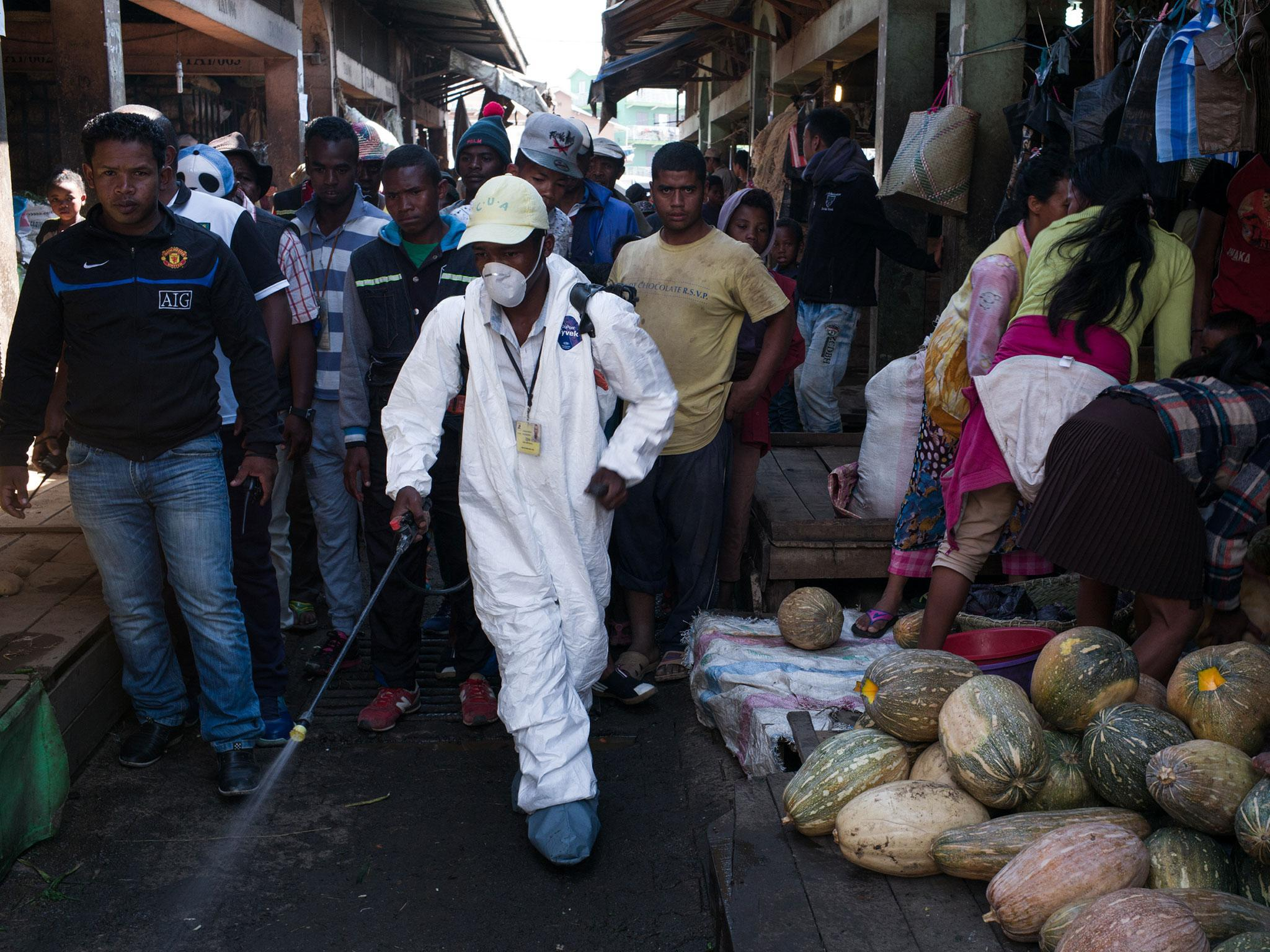 Madagascar plague death toll rises in 'worst outbreak for 50 years'