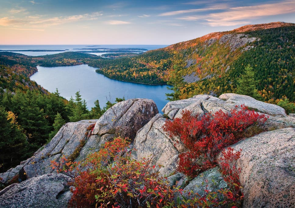Fall foliage: Where to catch the last colours of the season