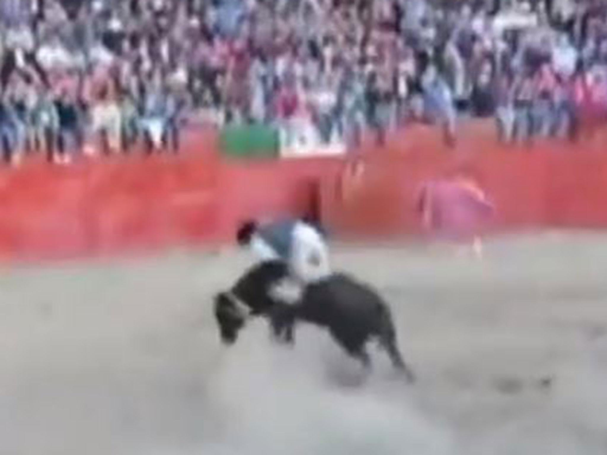 Bullfighting - latest news, breaking stories and comment - The