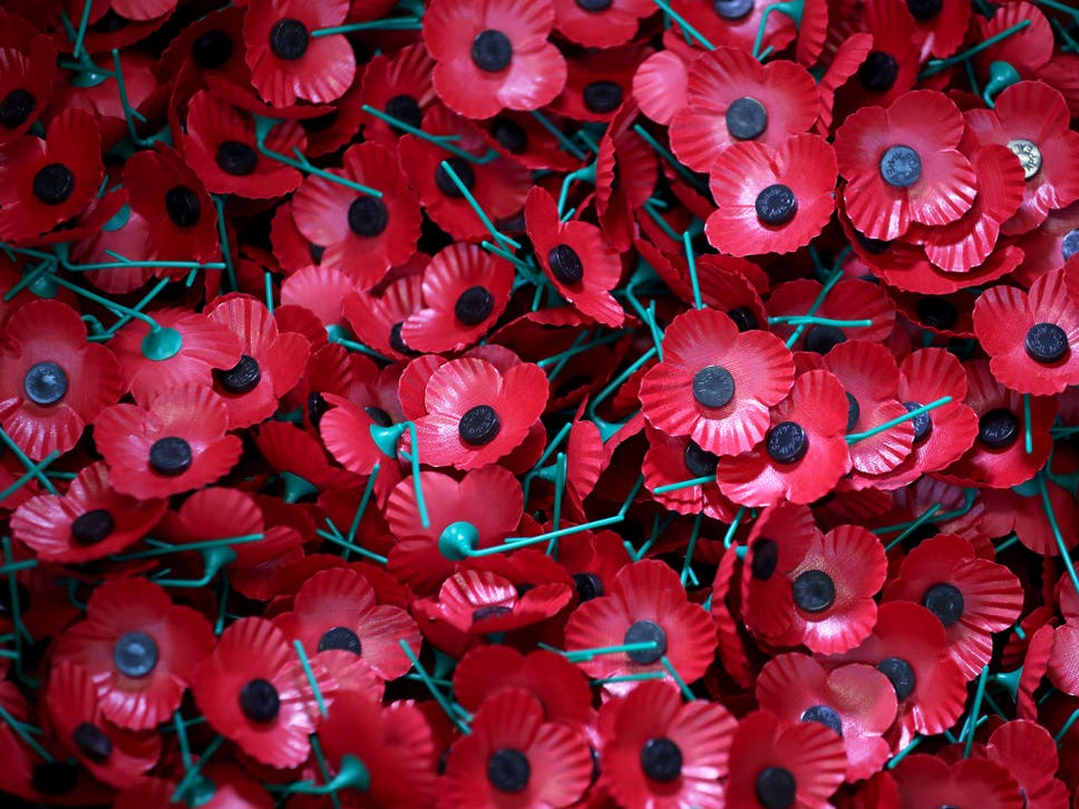 The Poppy Has Lost Its Original Meaning Time To Ditch It The