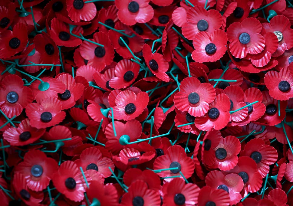 a6ed2946c9 The poppy has lost its original meaning – time to ditch it | The ...