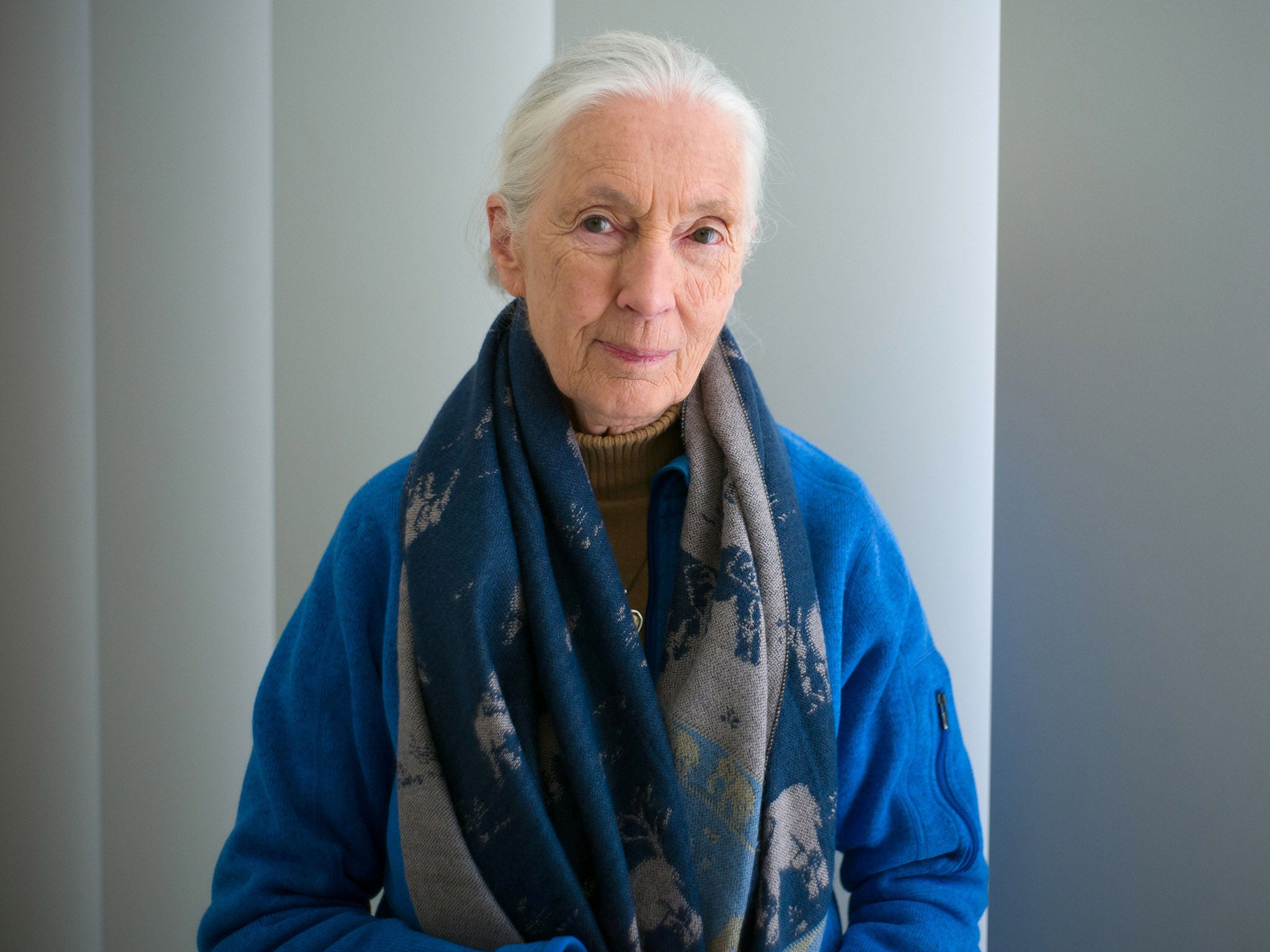Jane Goodall says 'humanity is finished' if we fail to learn from coronavirus