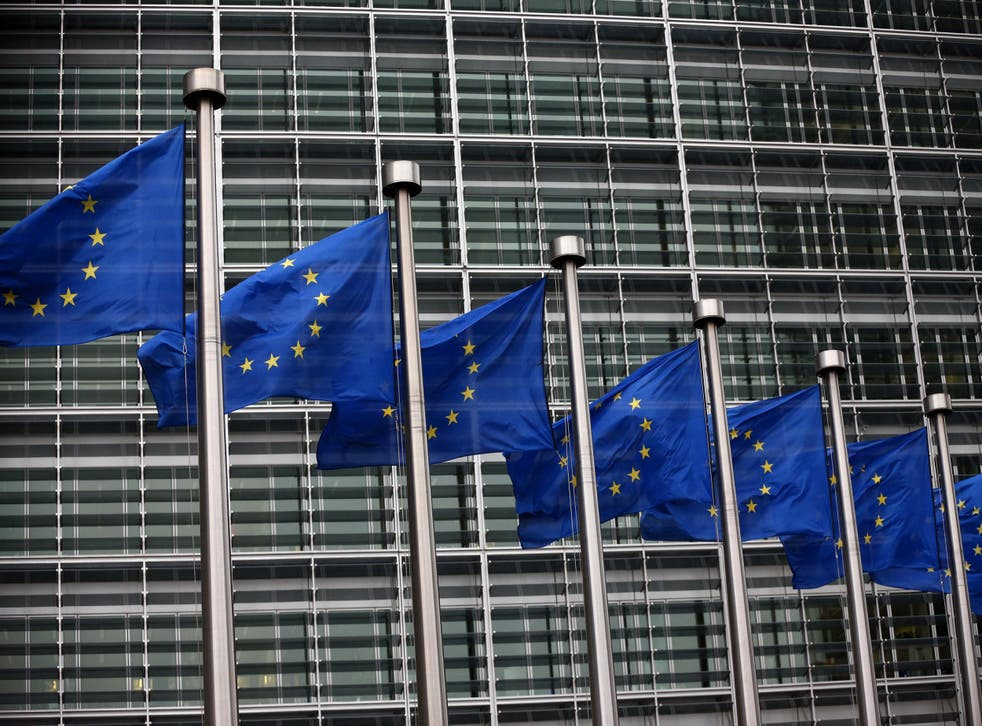 EU states and the European Parliament have three months to object to any of the new rules