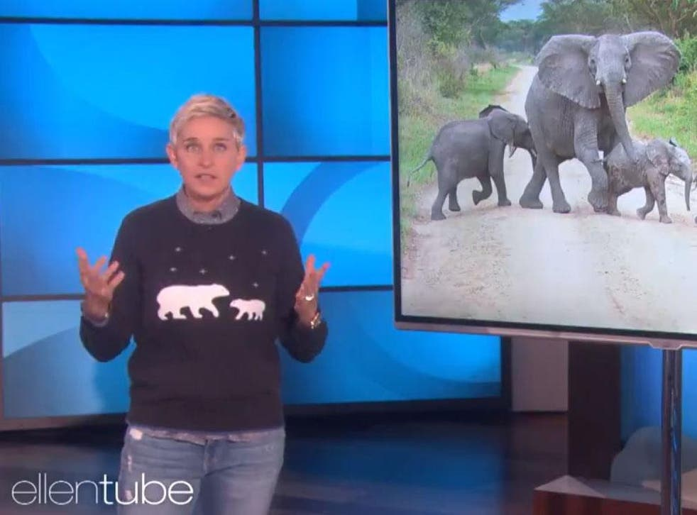 Ellen DeGeneres told an audience the decision 'got to' her