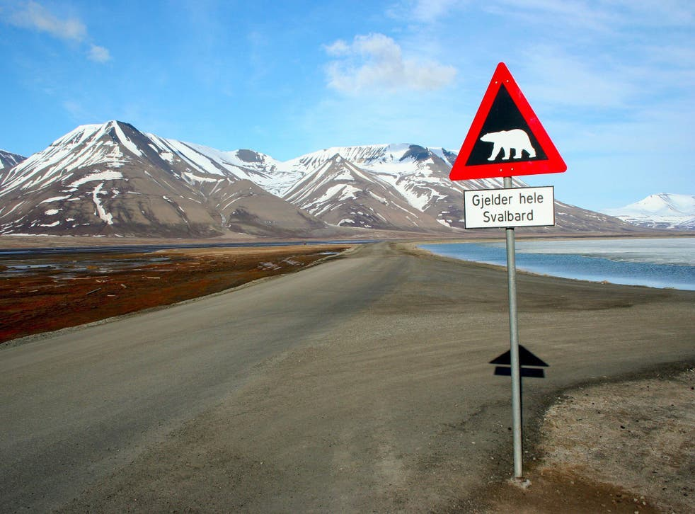 Svalbard is a mere 7,750 miles up the line of latitude from Cape Town