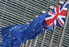 Just how important is Brexit to officials in Brussels?