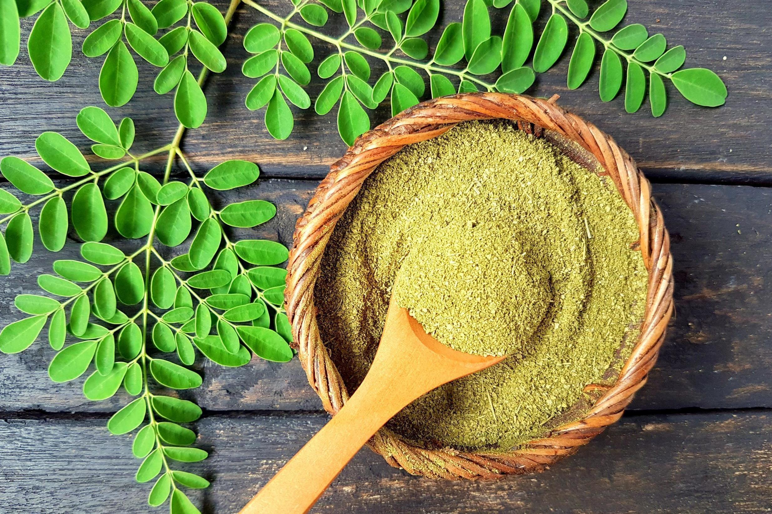 Moringa: The new superfood that's trending among wellness types