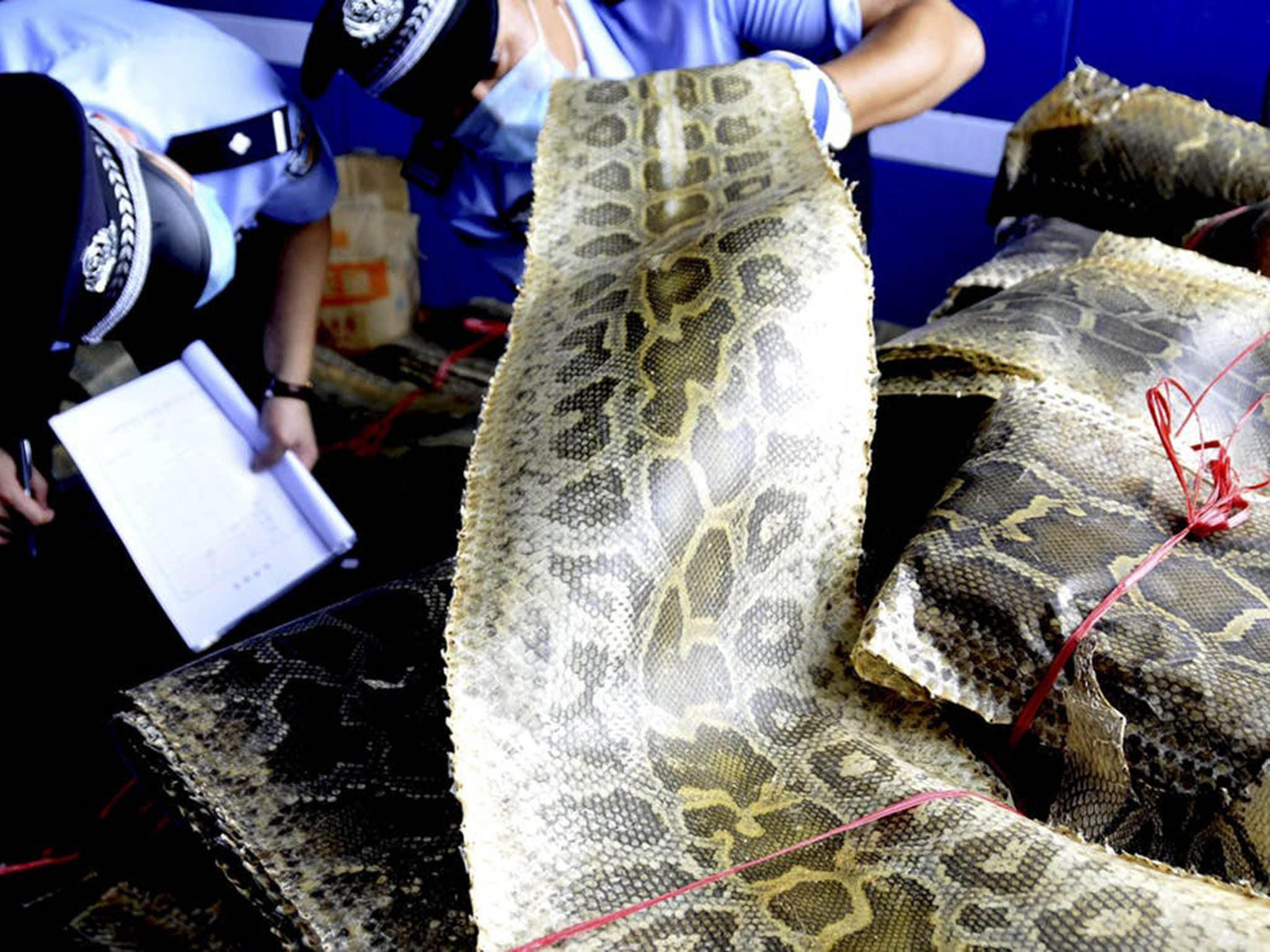 Cash to combat illegal poaching and trade of wildlife in developing countries