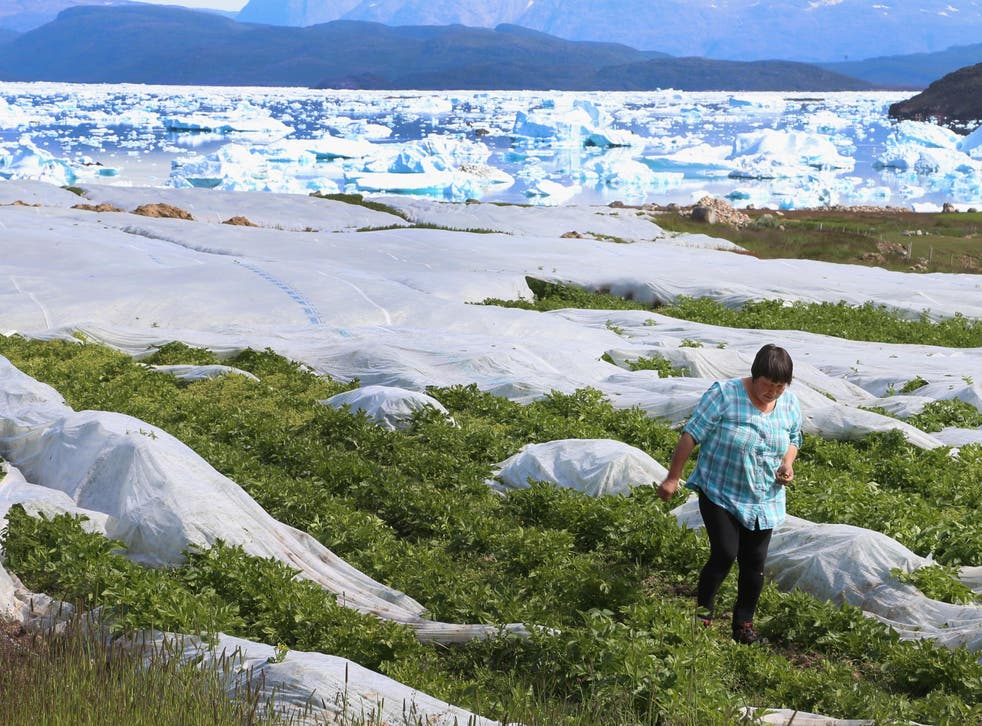 Communities in the Arctic are particularly susceptible to climate change, where the effects of global warming are thought to be far more extreme than the global average