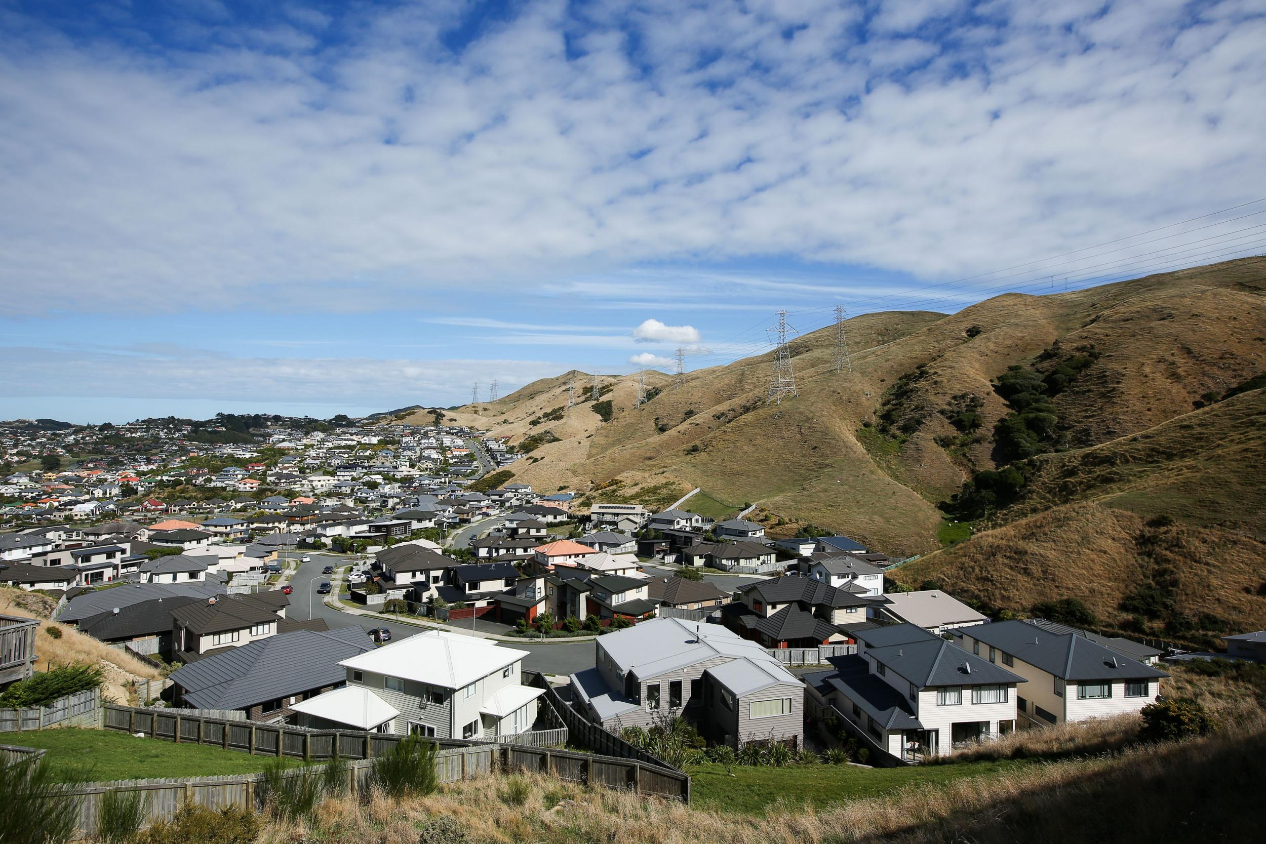 New Zealand bans foreigners from buying homes as housing