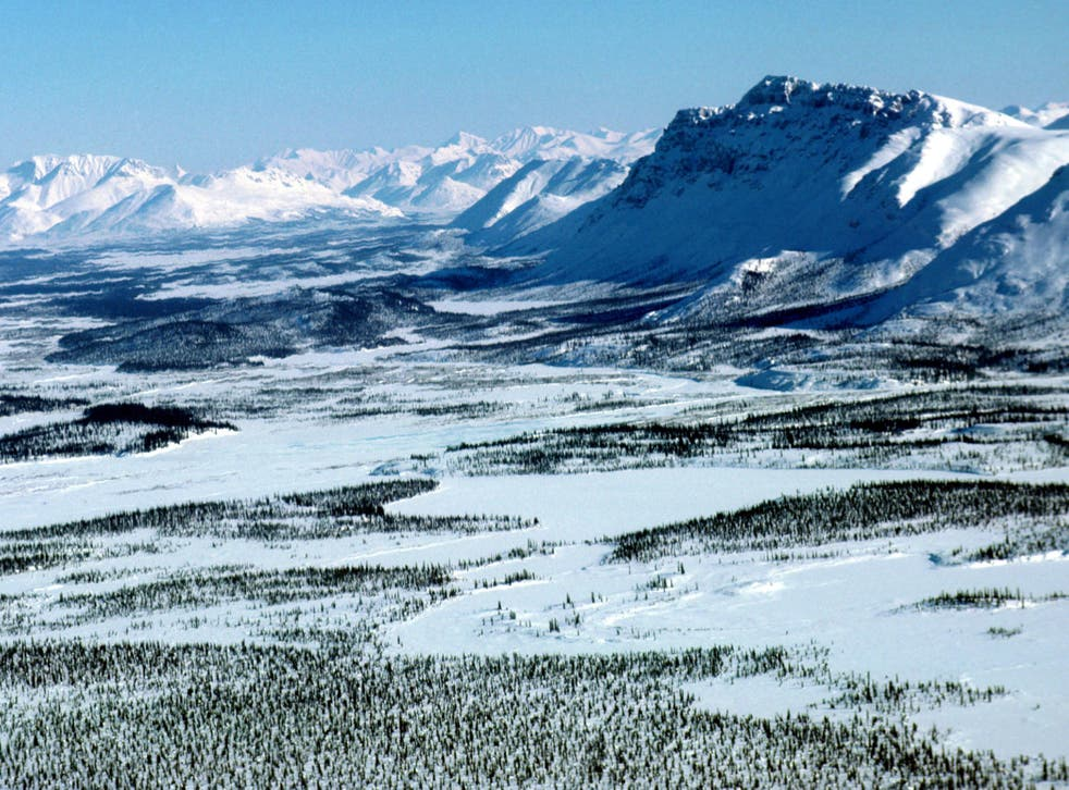 The effects of climate change are particularly pronounced in Arctic regions like Alaska