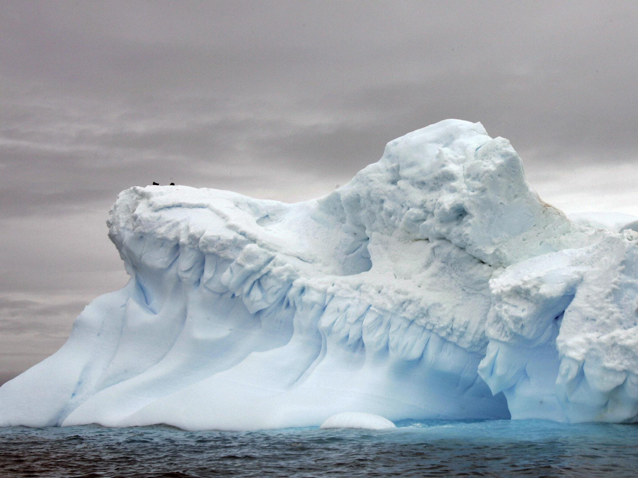 Global sea levels could rise 'up to five metres' if certain Antarctic ice sheets melt
