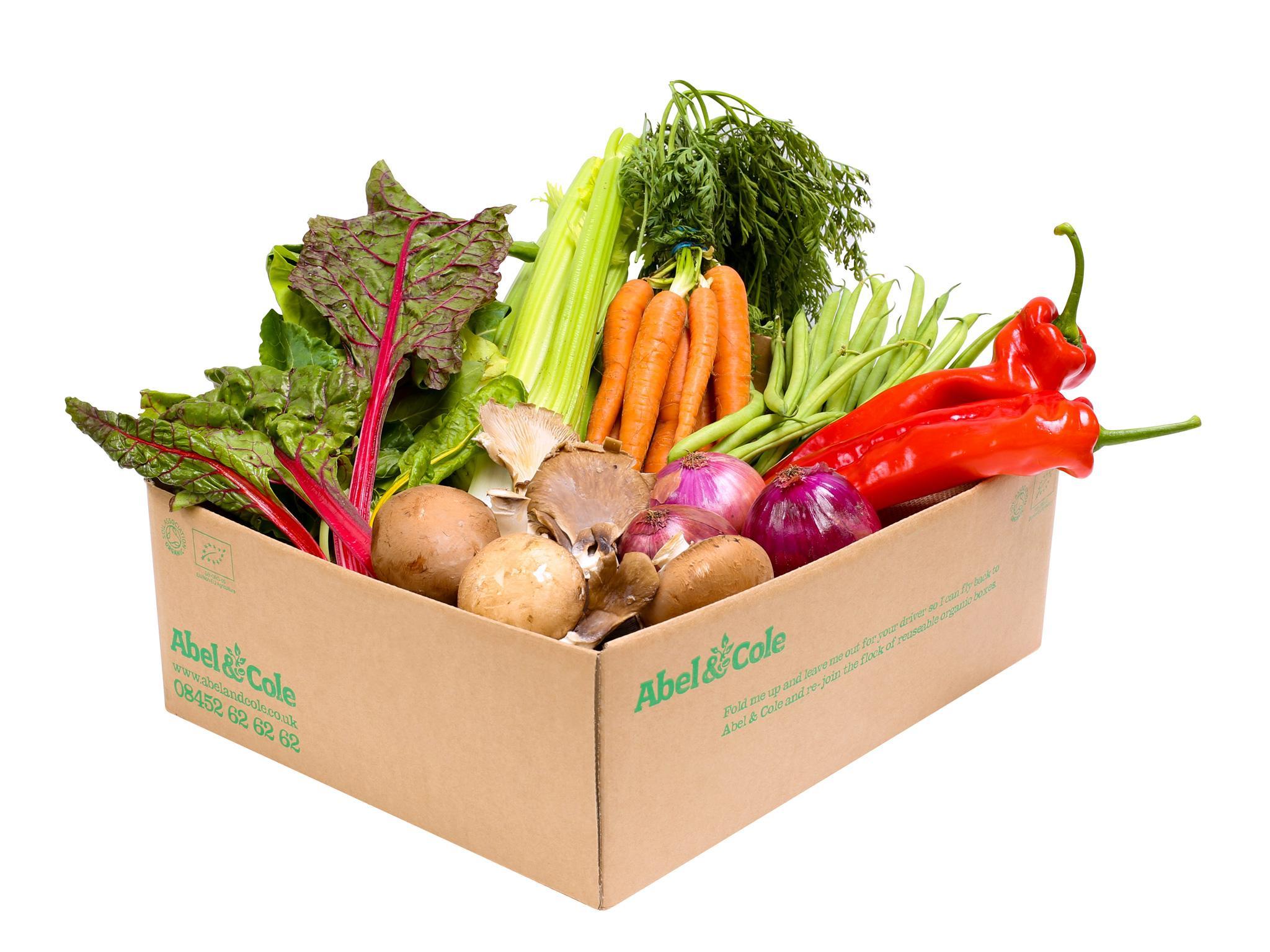 9 best vegetable bo | The Independent Planters Veggie Box Restaurant Story on veggie plants, veggie pringles, veggie animals, veggie garden, veggie baskets, veggie trees,