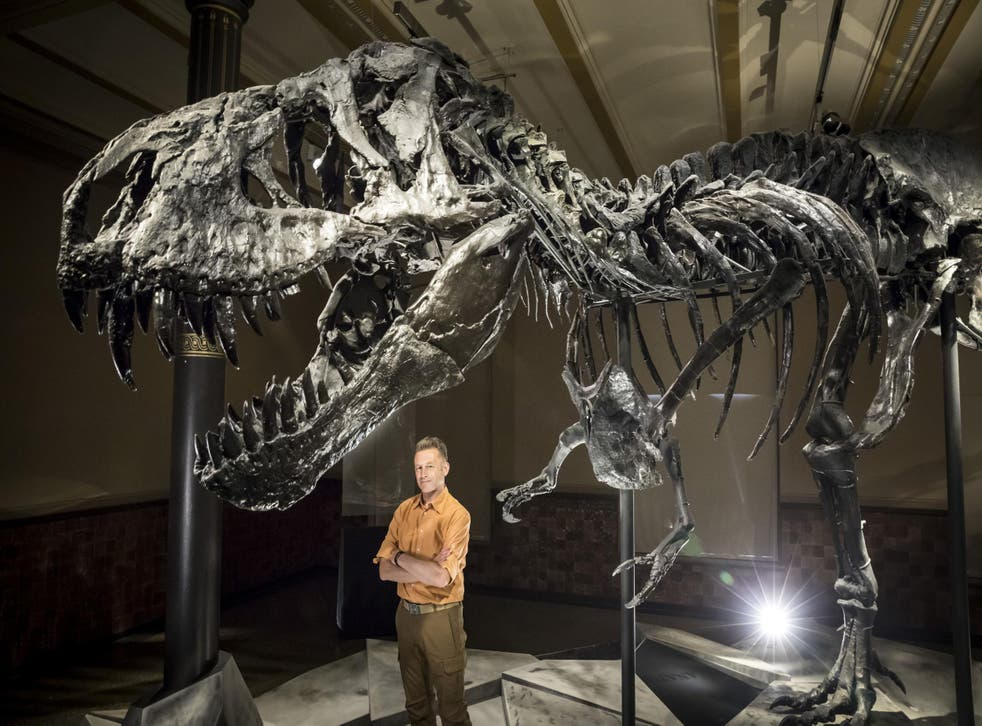 Saur point: Chris Packham took on the T rex myths and wrestled them to the ground before grinding them to dust with his powerful jaws