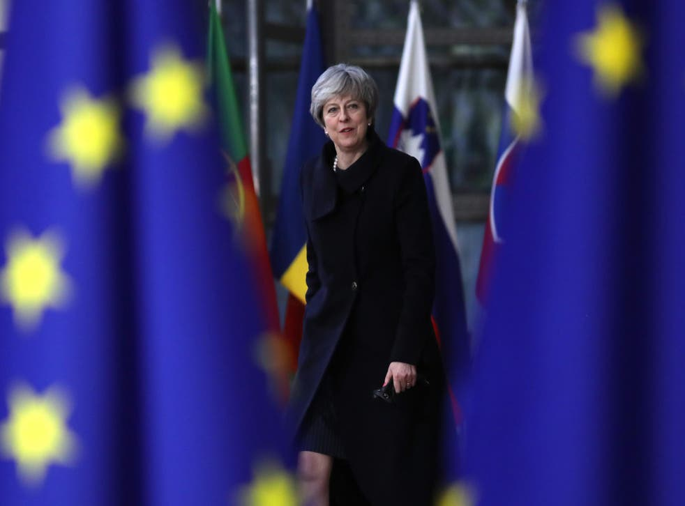 The latest legal challenge comes after Ms May faced an embarrassing defeat in the Commons at the hands of Tory rebels, and was forced to guarantee Parliament a 'meaningful' final vote on any deal