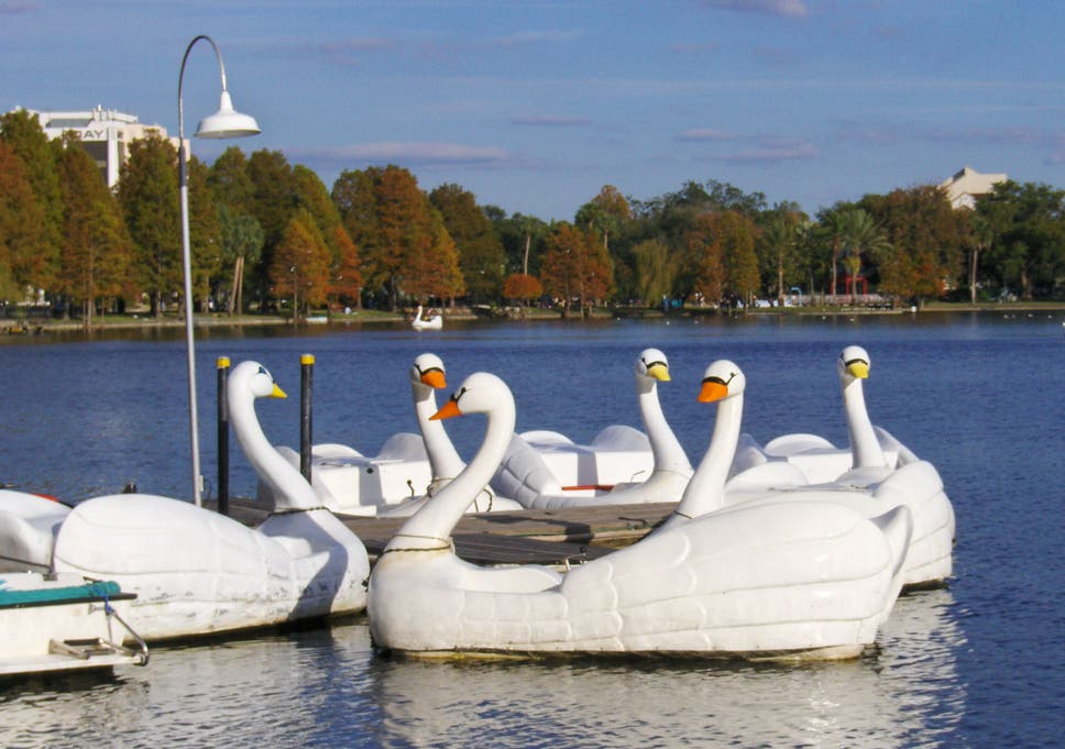 Man Took Large Quantity Of Mdma Then Stole Boat Because The Swans