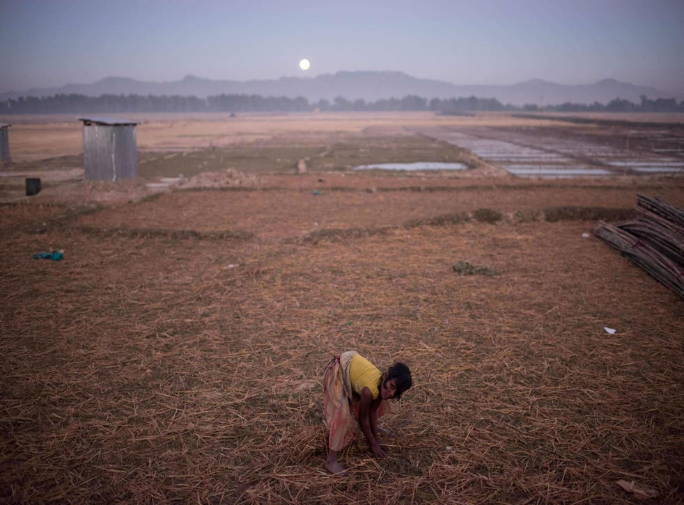 Up to 650,000 Rohingya have been forced from their homes