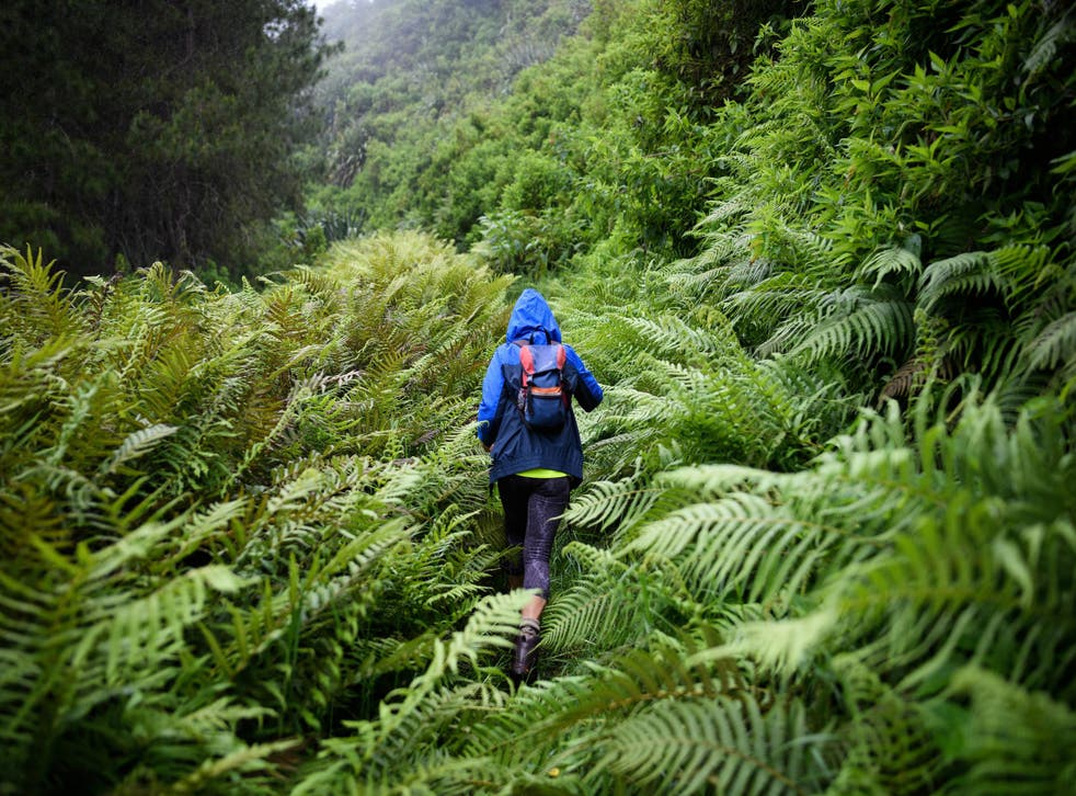 Go for a hike on St Helena with Val Joshua