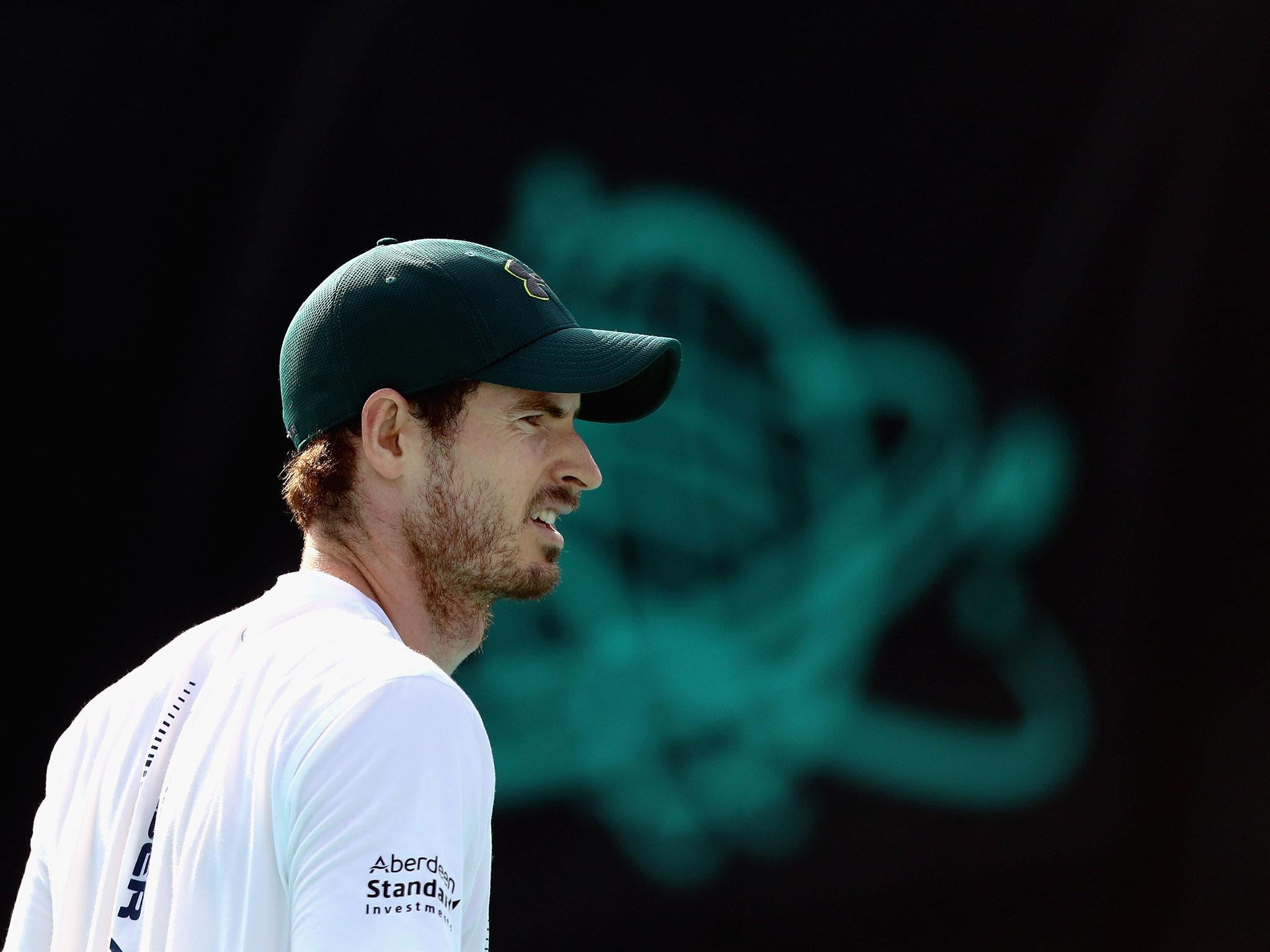 Andy Murray considering hip surgery with Australian Open campaign now in doubt
