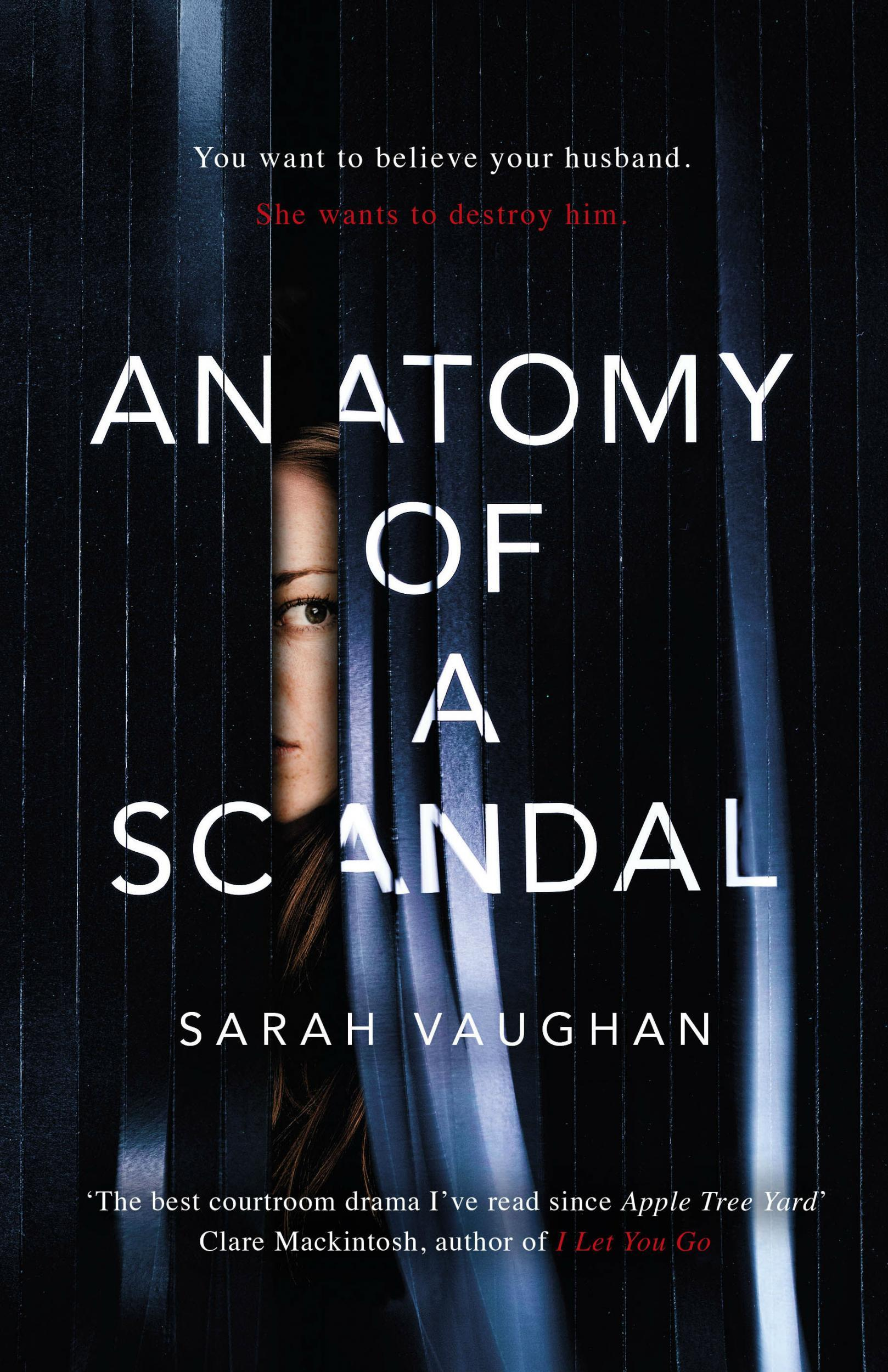 Anatomy Of A Scandal By Sarah Vaughan Book Review Hyped