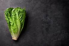 Warning issued over romaine lettuce after another E coli outbreak