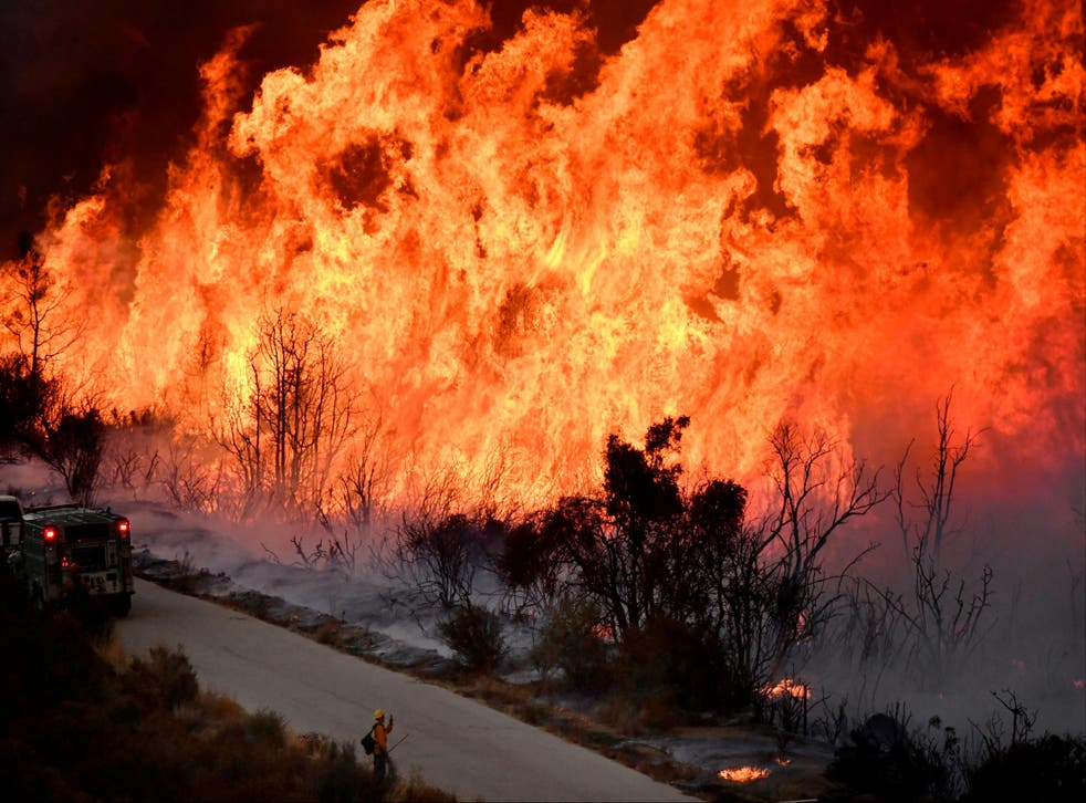 Rising temperatures due to global warming have been linked to devastating wildfires like the ones that ravaged California this year