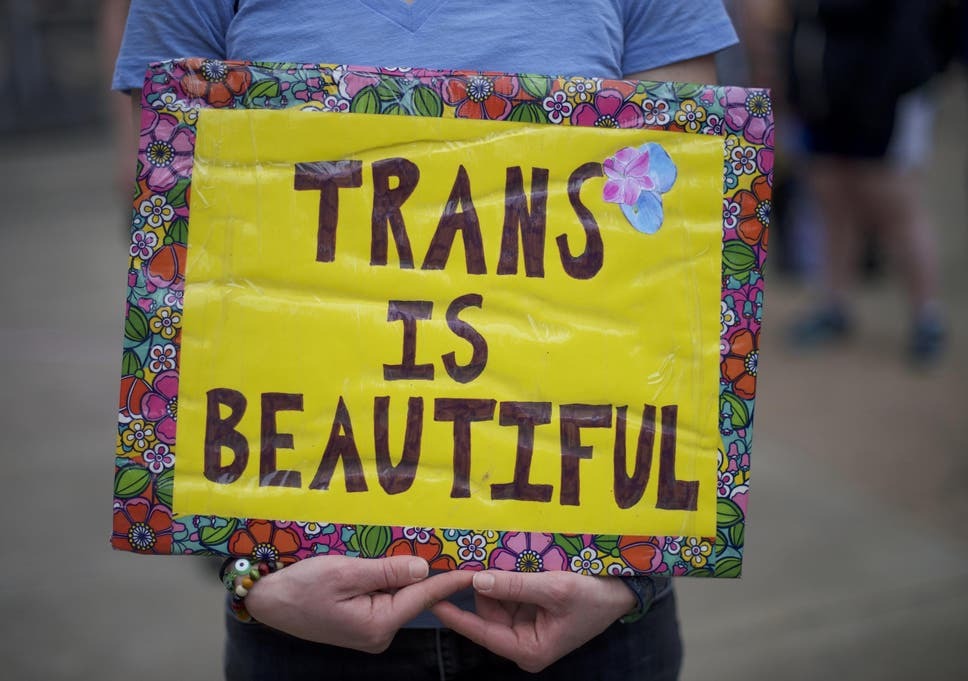 An analysis of the representation of trans community today