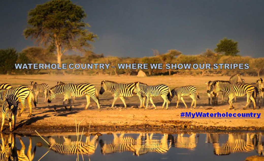 Botswana Government trolls Trump on Twitter over 's***hole countries' comments