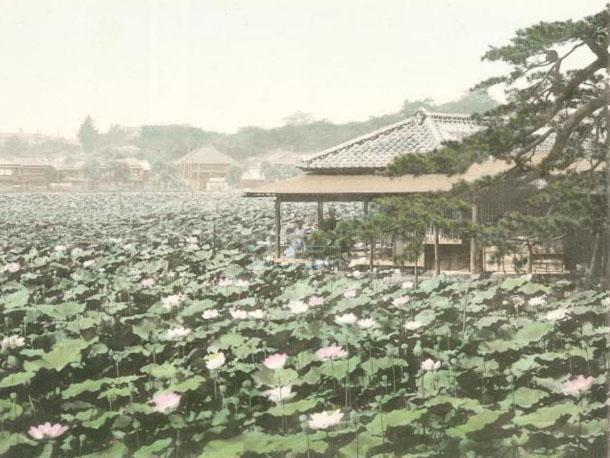 Amazing images of Tokyo before it was a city