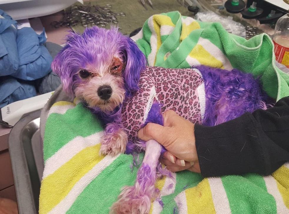 Violet was left with severe chemical burns