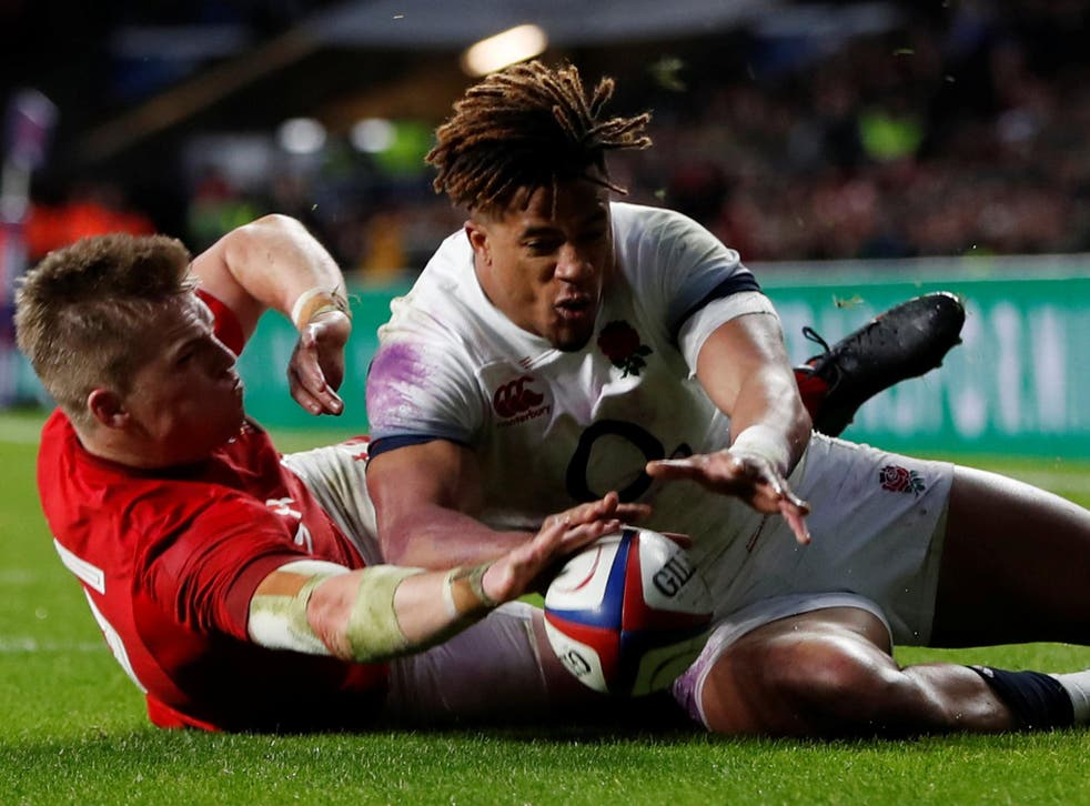 Gareth Anscombe believes he scored a try against England