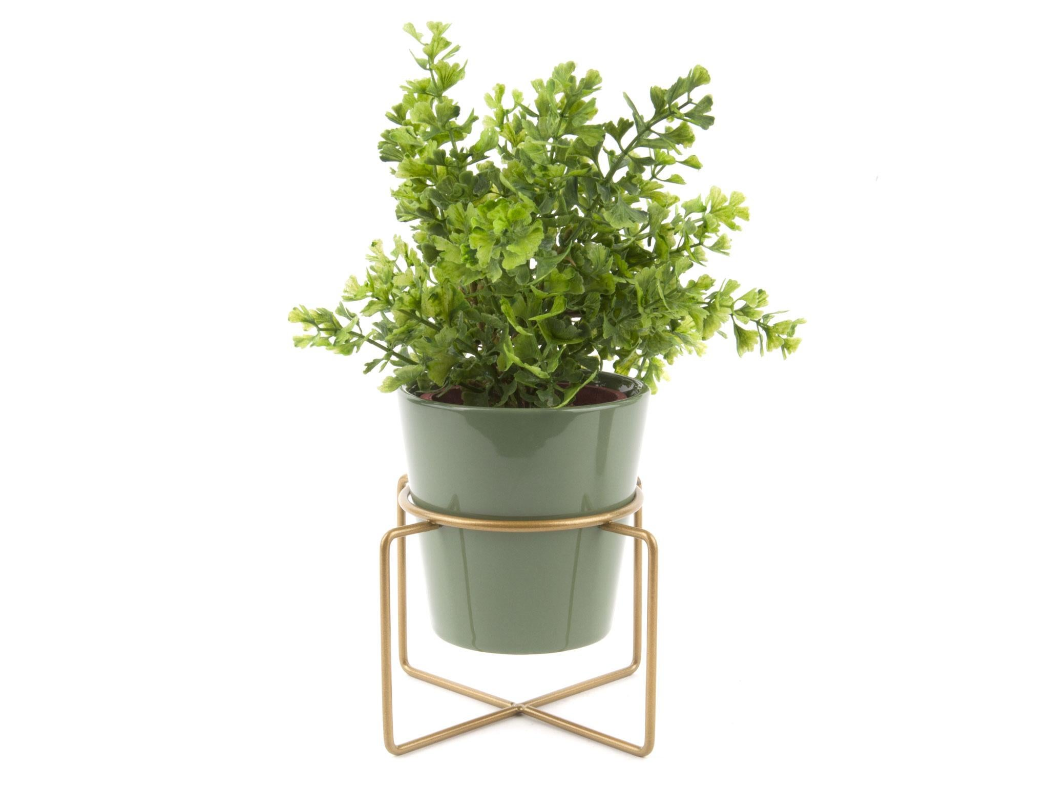 10 best indoor plant stands | The Independent